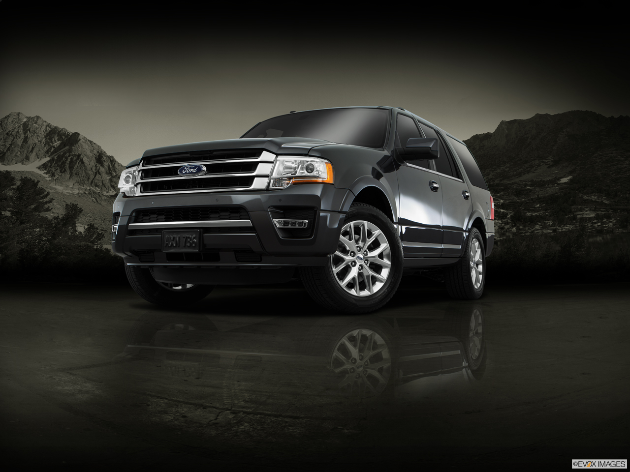 Exterior View Of 2016 Ford Expedition in Harrisburg